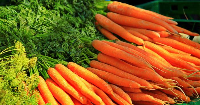 Mrkvové recepty sú veľmi zdravé najmä vďaka výživovej hodnote mrkvy.