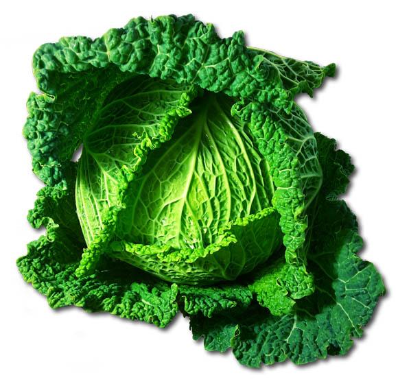 Zeleninové smoothie (recepty)