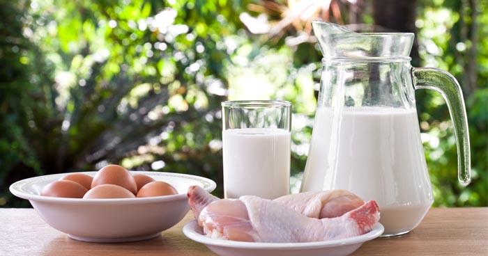 Pozrite sa ako funguje bielkovinová diéta a ako zaradiť jedálniček do bielkovín.
