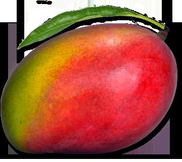 Mango radíme medzi najzdravšie potraviny na svete.