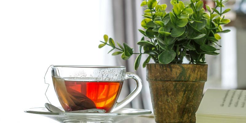 Čierny čaj na vlasy