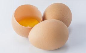 Alergia na vajcia – prejavy, príznaky a liečba