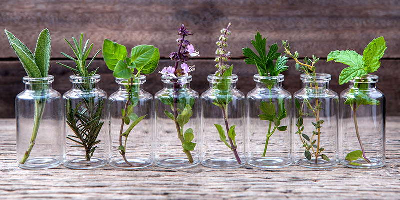 Čo je aromaterapia a esenciálne oleje