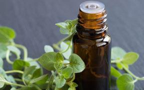 Oregánový olej - účinky