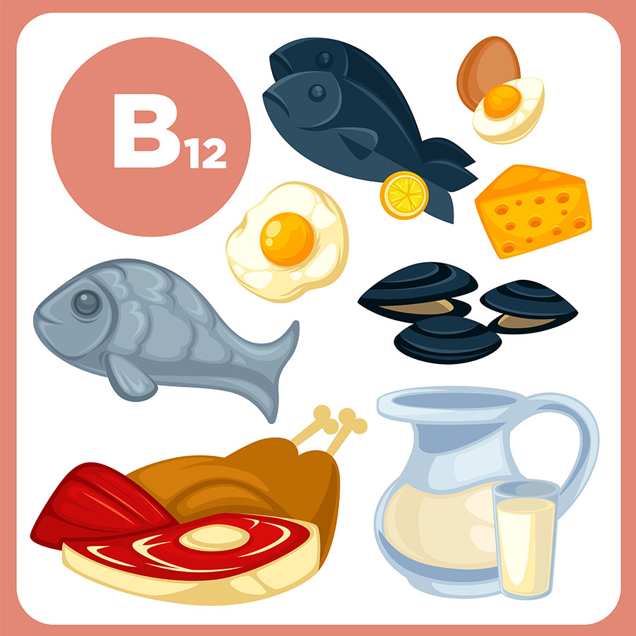 Vitamín B12 - potraviny
